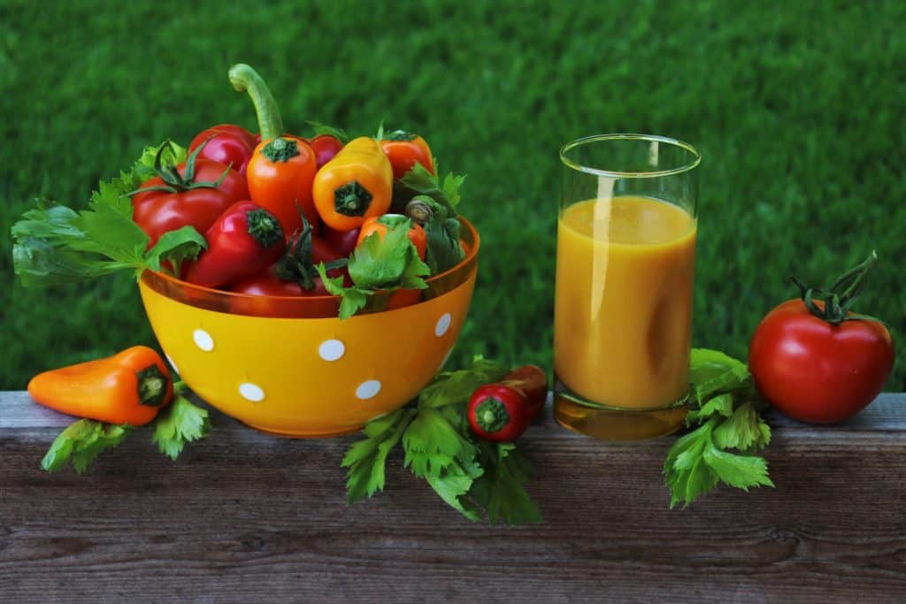 Can Diet Restrict The Aging Process?